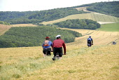 Cyclists going off road through a filed of barley on the South Downs, UK - Howard Davies - 20-07-2008