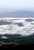 Pine forests and frozen lakes in northern Sweden close to the Artic Circle. Sweden 2006 - Howard Davies - 25-04-2006