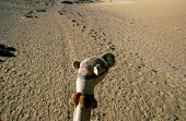 A camel rides across the desert near Aswan, Egypt 2005 - Howard Davies - 14-10-2005