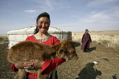 The daughter of a herder and here holding a day-old calf who lives close to the Achit Lake Achit lake territory, close to Khovd Soum, Uvs Aimag, Western Mongolia - 2000s,2007,adolescence,adolescent,adolescents,AGRICULTURAL,agriculture,aimag,animal,animals,Asia,asians,Aymag,Bayan,Bayan-Ologey,BME minority ethnic,Bos,capitalism,capitalist,child,Child Labor,child l