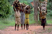 Group of women and children walking back to their village with firewood. Uganda. 1998. - Jim Holmes - 03-07-1998