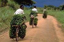 Bananas being transported, Masaka. Uganda. 1998 - Jim Holmes - 03-07-1998