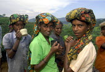 Women tea pickers taking a break, Sri Lanka. - Tom Parker - 2000s,2006,AGRICULTURAL,agriculture,break,by hand,capitalism,capitalist,DINNER,dinners,DINNERTIME,EARNINGS,EBF Economy,EQUALITY,estate,estates,farm,farm worker,farm workers,farmed,farmhand,farmhands,f