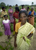 Women's farming cooperative of IDP Tamils, Sri Lanka. - Tom Parker - 26-12-2005