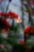 One of Luang Prabangs famous Buddhist Temples. - Tom Parker - 04-04-2007