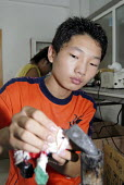 Young boy working in the Toy Home soft toy factory, Shanghai, China - Timm Sonnenschein - 01-09-2006
