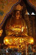 Buddha Amitabha, Puji Si Temple, Pu Tuo Shan, China - Timm Sonnenschein - 2000s,2005,ace art arts culture,Amitabha,Amitabhas,artwork,artworks,Buddha,Buddha's,Buddhism,Buddhist,buddhists,China,Chinese,compassion,compassionate,covered,deities,deity,dhamma,dharma,figure,figure