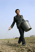 A farmer spreading  fertiliser by hand in a field  on the outskirts of Shanghai, China - Timm Sonnenschein - 17-04-2009
