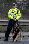 A Police officer with a snarling police dog during the English Defence League Protest in Dudley - Timm Sonnenschein - , Protest,2010,2010s,activist,activists,adult,adults,animal,animals,CAMPAIGNING,CAMPAIGNS,CLJ,Defence,DEFENSE,DEMONSTRATION,dogs,EDL,force,Officer,officers,Police,Police Dog,policeman,policemen,polici