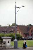 Surveillance cameras monitoring cars entering and leaving an area with a high �Muslim population. Instaled by the �Birmingham Safety Partnership and �financed through a Home Office counter-terrorism f... - Timm Sonnenschein - 18-06-2010