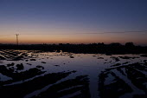 A field in at dawn, Spalding, Lincolnshire - Timm Sonnenschein - 30-10-2013