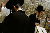 Orthodox Jews praying at the western wall - also known as the wailing wall - in the Old City. Jerusalem, Israel, 2005 - Steven Langdon - 2000s,2005,Al-Haram,al-Qudsi,al-Sharif,Har ha-Bayit,Hasidic,Hasidism,holiest site,holy site,in,israel,israeli,Israelis,Jerusalem,jew,jewish,jews,judaism,Kotel,male,man,men,middle east,monotheistic,Ort