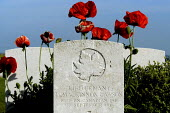 British and Commonwealth first world war cemetery at Mont Huon, Somme region, France. There are around 3000 soldiers buried here. Symbolic red poppies grow around the grave of a Canadian soldier - Paul Mattsson - 07-06-2004