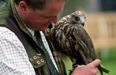 Border Union agricultural show, Kelso, Scottish Borders. Falconry display - Paul Mattsson - 26-07-2002