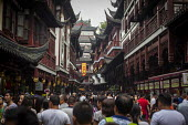 Busy streets, Old City of Shanghai, China. - Connor Matheson - 03-09-2015