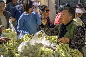 California, Oakland farmers market near Chinatown, Asian immigrants shopping - David Bacon - American,2010s,2015,America,American,americans,Asian,asians,BAME,BAMEs,BME,bmes,bought,buy,buyer,buyers,buying,California,Cauliflower,Cauliflowers,Chinatown,Chinese,cities,City,commodities,commodity,c