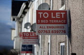 Houses to let, Yorkshire - John Harris - 2010s,2015,board,board boards,business,communicating,communication,ebf,Economic,economy,house houses,Houses,Housing,rural,sign,signs,terrace,terraced,Terraced Houses,terraces,To Let,Yorkshire