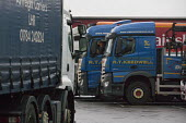 Drivers in their cabs, Lorry park, M1 Motorway Services, Nottinghamshire - John Harris - 2010s,2015,break,break time,breaktime,driver,drivers,driving,EBF,Economic,Economy,employee,employees,Employment,HAULAGE,HAULIER,HAULIERS,HGV,hgvs,highway,job,jobs,LBR,LGV,LGVs,lorries,lorry,male,man,m