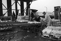 Loading frozen fish, Hull fish dock, Port of Grimsby 1968 - Martin Mayer - 29-10-1968
