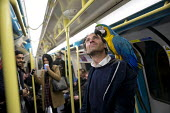 Italian entertainer with his macaw parrot, Jubillee Line, London Underground, London - Jess Hurd - 2010s,2016,animal,animals,Ara ararauna,bird,birds,blue and gold macaw,carriage,carriages,cities,city,EMOTION,EMOTIONAL,EMOTIONS,europeregi,exotic,exotica,For,happiness,happy,Italian,journey,journeys,J