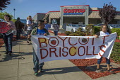 California, Farm workers protest at Costco, demanding that the chain stop selling Driscoll's Berries because they are produced under sweatshop conditions at Sakuma Farms in Washington State. They are... - David Bacon - 2010s,2016,activist,activists,against,America,American,americans,Amerindian,Amerindians,BAME,BAMEs,banner,banners,berry,BME,bmes,boycott,boycotting,California,CAMPAIGN,campaigner,campaigners,CAMPAIGNI