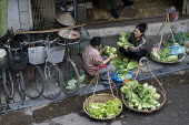 Hanoi, Vietnam, Long Bien produce market early in the morning, selling fruit and vegetables. - David Bacon - 2010s,2015,Asia,asian,asians,asiaregi,bicycle,bicycles,BICYCLING,Bicyclist,Bicyclists,BIKE,BIKES,cycle,cycles,cycling,Cyclist,Cyclists,EBF,Economic,Economy,employee,employees,Employment,FEMALE,food,Fo