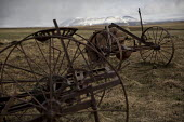 Massey-Harris plow. Plough graveyard, Snartarstadir, Iceland - Jess Hurd - 2010s,2016,agricultural,agriculture,capitalism,capitalist,cemeteries,cemetery,country,countryside,disused,EBF,Economic,Economy,eu,Europe,european,europeans,farm,farmed,farming,farmland,farms,field,fie