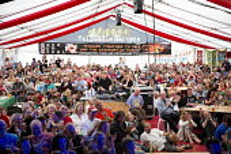 Tolpuddle Martyrs' Festival 2016. Dorset. - Jess Hurd - 2010s,2016,ACE,Dorset,Festival,FESTIVALS,marque,member,member members,members,PEOPLE,SWTUC,tent,Tolpuddle Martyrs festival,Tolpuddle Martyrs' Festival,trade union,trade union,trade unions,trades union