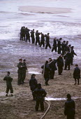 SS Torrey Canyon Disaster, 1967. Clean up operation by the British Army after the oil tanker ran aground between Lands End and the Scilly Isles causing the biggest oil spill in UK history, 100 million... - Romano Cagnoni - 02-04-1967