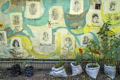 Berlin, Germany. Growing food in a community garden, Kreuzberg - David Bacon - 2010s,2016,agricultural,agriculture,Berlin,capitalism,cities,city,collective,communities,community,draw,drawing,EBF,Economic,Economy,eu,Europe,european,europeans,eurozone,farm,farmed,farming,food,FOOD