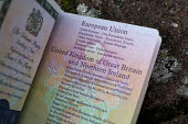European Union, UK and Northern Ireland passport - John Harris - 2010s,2016,Brexit,EU,Europe,European Union,eurosceptic,Euroscepticism,eurosceptics,identity,Ireland,IRISH,Leave,leaving,passport,passports,personal ID,POL,political,POLITICIAN,POLITICIANS,Politics,UK
