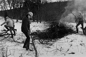 YTS Scheme workers clearing and burning wood, Kielder Forest, Northumberland 1985 - Denis Doran - 23-01-1985