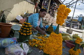 Street seller selling flowers for a religious festival, Luang Prabang, Laos - David Bacon - 30-12-2015