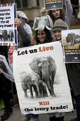 Protest for full ban on the ivory trade as it is debated in Parliament, Westminster, London - Jess Hurd - 2010s,2017,Action for Elephants UK,activist,activists,agencies,agency,aid,animal,Animal Rights,Animal Welfare,animals,assistance,BAME,BAMEs,ban,banning,bans,Black,BME,bmes,CAMPAIGN,campaigner,campaign