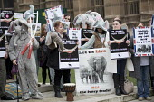 Protest for full ban on the ivory trade as it is debated in Parliament, Westminster, London - Jess Hurd - 2010s,2017,Action for Elephants UK,activist,activists,agencies,agency,aid,animal,Animal Rights,Animal Welfare,animals,assistance,ban,banning,bans,CAMPAIGN,campaigner,campaigners,CAMPAIGNING,CAMPAIGNS,