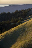 View from Mount Tampalpais as the sun sets on on the hills above a calm sea north of San Francisco - David Bacon - 2010s,2017,Bolinas,calm,CLOUD,clouds,coast,coastal,coasts,country,countryside,Golden Gate,grass,hill,hills,island,islands,landscape,landscapes,Mountain Range,mountainous,mountains,Mt. Tamalpais,ocean,