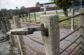 Old, abandoned cattle market pens and a brand new Tesco supermarket store, Welshpool, Wales - Jess Hurd - 23-09-2016