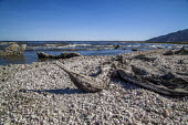 Coachella Valley California, USA The Salton Sea, an artificial sea below sea level created in the desert between the Coachella and Imperial Valleys by the accidental diversion of the Colorado River. T... - David Bacon - 04-04-2017