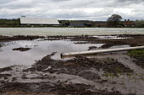Plastic mulch over crops, Shropshire - John Harris - 16-04-2017