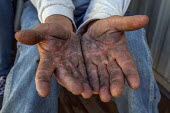 Coachella Valley, California, The hands of a palmeros show the lines and creases of a lifetime of hard work in the date palm groves - David Bacon - 2010s,2017,age,agricultural,agriculture,american,americans,BAME,BAMEs,BME,bmes,by hand,California,capitalism,casual workers,Coachella Valley,date,dates,desert,Diaspora,diversity,EARNINGS,employee,empl