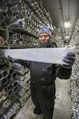 Denver, Colorado, USA National Ice Core Laboratory curator Geoff Hargreaves holding a one meter section ice core stored at -36 degrees C. The Laboratory stores 19,000 meters of ice cores from Antarcti... - Jim West - 28-08-2017