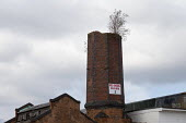 Red Diesel Sold Here, sign on an old factory chimney with a buddleia growing out of it, Saltley Birmingham - John Harris - 17-09-2017