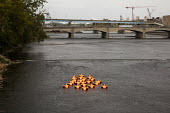 Grand Rapids, Michigan USA ArtPrize competition Safety Orange Swimmers by Ann Hirsch and Jeremy Angier displayed in the Grand River. Each of the 22 figures represents more than one million of the 22.5... - Jim West - 2010s,2017,ACE,America,american,americans,Ann Hirsch,art,art festival,Art Gallery,Art Prize,ArtPrize,arts,artwork,artworks,BOAT,boats,border control,border controls,borders,cities,City,COMPETITATIVE,c