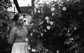 Sheila Robinson artist and Great Bardfield Artist in her garden 1958. The Great Bardfield Artists were a community of artists who lived in Great Bardfield, a village in north west Essex. They lived to... - Alan Vines - 03-07-1958