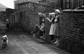 Miners wives talking in the back yard Easington, County Durham 1948 while one of their children is playing nearby - Elisabeth Chat - 1940s,1948,animal,animals,boy,boys,canine,chat,chatting,child,CHILDHOOD,children,communicating,communication,communities,community,conversation,conversations,County Durham,dialogue,discourse,discuss,d