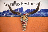 Boquillas del Carmen, Coahuila, Mexico, an image of President Donald Trump embedded in a longhorn skull with a slogan opposing a border wall on the wall of the Boquillas Restaurant - Jim West - 05-11-2017