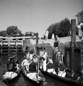 Royal Swan Upping River Thames 1959. Dating back to the 12th Century an annual census of the swan population on a particular stretch of the River Thames to count the number of young cygnets and ensure... - Alan Vines - 1950s,1959,ACE,animal,animals,bird,birds,boat,boating,boats,catch,catching,census,ceremonial,ceremonies,ceremony,count,counting,country,countryside,Culture,cygnet,cygnets,ENI,environment,environmental