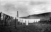 Clean washing hanging on a line in the pit village of Shotton in County Durham with slag heap from Shotton Colliery in background 1948. The local new town of Peterlee emerged from the New Towns Act fo... - Elisabeth Chat - 01-06-1948