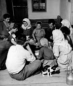Post war UN World Health Organisation programme Bosnia 1948. Family of Hassan Bajraktavevic eating a pitta dish or vegetable pie from the same plate. A principle cause of widespread endemic syphilis i... - Eric Schwab - 1940s,1948,adult,adults,Aid Agency,Bosnia,cat,CHILD,CHILDHOOD,children,communities,community,congenital,DAD,DADDIES,DADDY,DADS,DESEASE,DESEASES,disease,DISEASES,dress,eat,eating,excluded,exclusion,fam