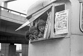 West London 1974 Gypsy children watching as police evict their camp under the Westway, Shepherds Bush - NLA - 23-10-1974